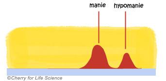 hypomanie Formes de la maladie bipolaire trouble bipolaire
