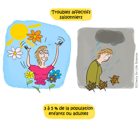 Les troubles affectifs saisonniers Formes de la maladie bipolaire trouble bipolaire