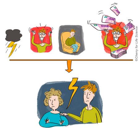Troubles bipolaires vivre-avec-la-maladie trouble bipolaire Vivre avec un bipolaire