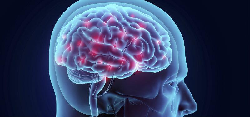 Bipolarité et troubles du rythme circadien