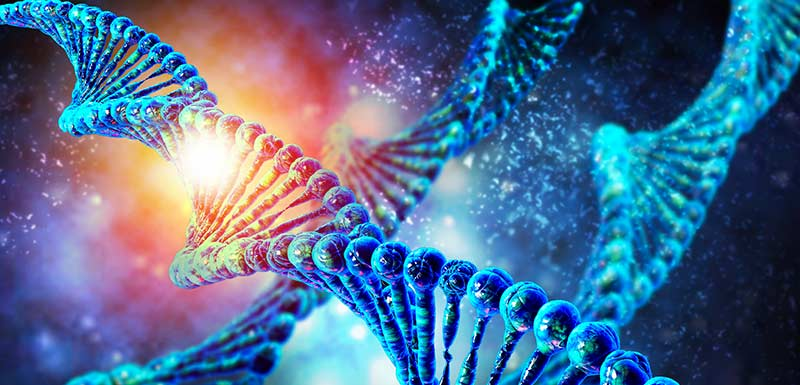 mecanismes moleculaires traitement trouble bipolaire